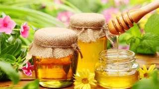 Как и где хранить мёд