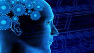 Улучшение работы мозга и памяти