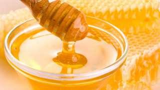 Польза и вред при употреблении мёда
